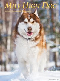 201_Mile_HIgh_Dog_-_February_2015_cover