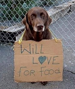 How does your donation to the Colorado Pet Pantry Help?