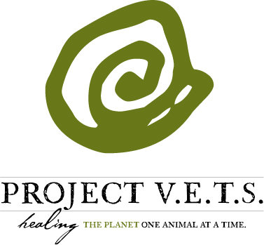 project-vets